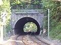 Tunnel de La Marche entrée NW.jpg