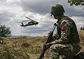 Turkish soldiers and Serbian Armed Forces conduct more than just a routine patrol 160629-A-VI439-064.jpg