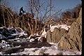 Two Views of Waterfalls and Rapids at Great Falls Park, Virginia (6293f187-6cf8-48d9-a300-b81a15d95b2d).jpg