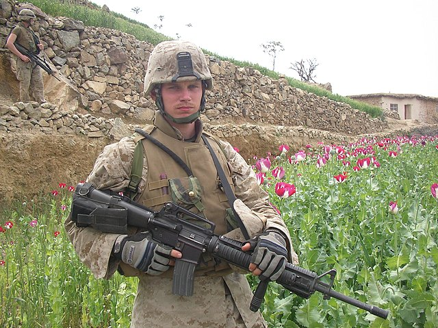 US_Army_solder_on_a_Poppy_Field.jpg: US Army solder on a Poppy Field in Afghanistan