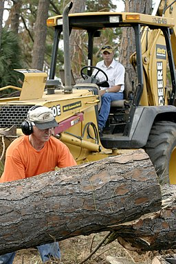 US Navy 041005-N-4204E-035 Commanding Officer, Center for Naval Aviation Technical Training (CNATT), Capt. R. Carl Mock, finishes cutting through one of the massive pines trees down along the Naval Air Station Pensacola