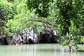 Underground River in Puerto Princesa, Palawan 09.JPG