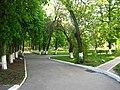 University - panoramio (1).jpg