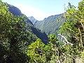 Vallée de Takamaka - panoramio (2).jpg