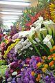 Variedad de flores en el Mercado de Medellín.jpg