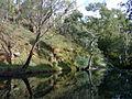 Vaughan river, Vaughan Victoria Australia.jpg