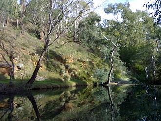 Loddon River - Image: Vaughan river, Vaughan Victoria Australia