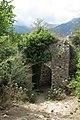 Vegetation growing over the wall of Mystra.jpg
