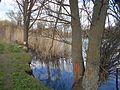 Verhuny, Poltavs'ka oblast, Ukraine, 37873 - panoramio (126).jpg