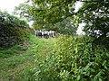 View from Robridding Lane - geograph.org.uk - 562072.jpg