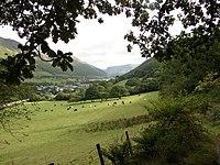 View from Talyllyn Railway, near Abergynolwyn - geograph.org.uk - 229846.jpg