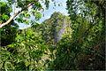 View near Kayangan bay - panoramio.jpg