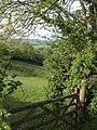 Vista near Coombe Park - geograph.org.uk - 804167.jpg