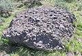 Volcanic breccia in Jackson Hole.JPG