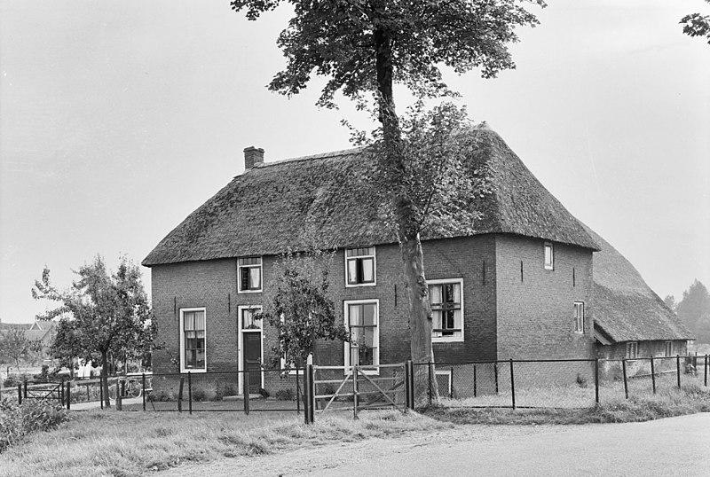 Boerderij op T-vormige plattegrond in Wadenoijen ...