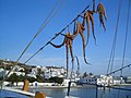 Vue sur le port de Mykonos.JPG