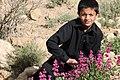 Wali Tangi Urak Quetta Baluchistan Pakistan 3.jpg
