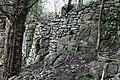 Wall, High Cote - geograph.org.uk - 364141.jpg