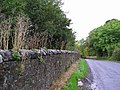 Wall - geograph.org.uk - 62976.jpg