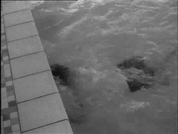 Bestand:Wereldrecord achteruitzwemmen-522074.ogv