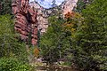 West Fork of Oak Creek Canyon No. 108 (30273227456).jpg