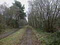 West Moors, trackbed - geograph.org.uk - 1640509.jpg