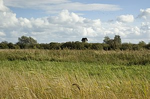 Wicken Fen - Image: Wicken Fen Hide
