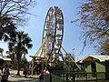 Wild Adventures Century Wheel.JPG