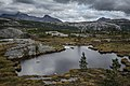 Wilderness near Bodø 3 - panoramio.jpg