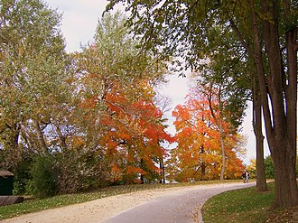 University of Wisconsin–Madison Lakeshore Nature Preserve -  Lakeshore Path as it leads into Willow Creek Woods.