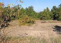 Windmühlenberg Gatow1.JPG