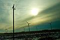 Winter Windmills Iowa 3087150694 o.jpg