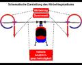 Wirbelringstadium.PNG