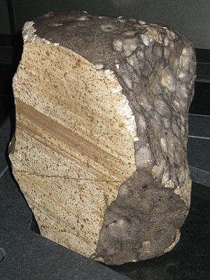 Wold Cottage meteorite - On display in the Natural History Museum, London