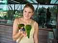 Woman feeding lorikeets at Jurong BirdPark-28Aug2006 (2).jpg