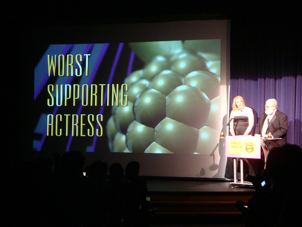 Worst Supporting Actress at 29th Razzie Awards