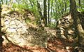 Zamek w Ostrężniku ruiny pl.jpg