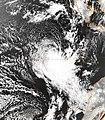 Zelia 8 October 1998.jpg