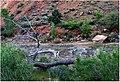 Zion Misc, Virgin River Dead Fall 4-30-14 (14052437859).jpg