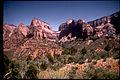 Zion National Park ZION2443.jpg