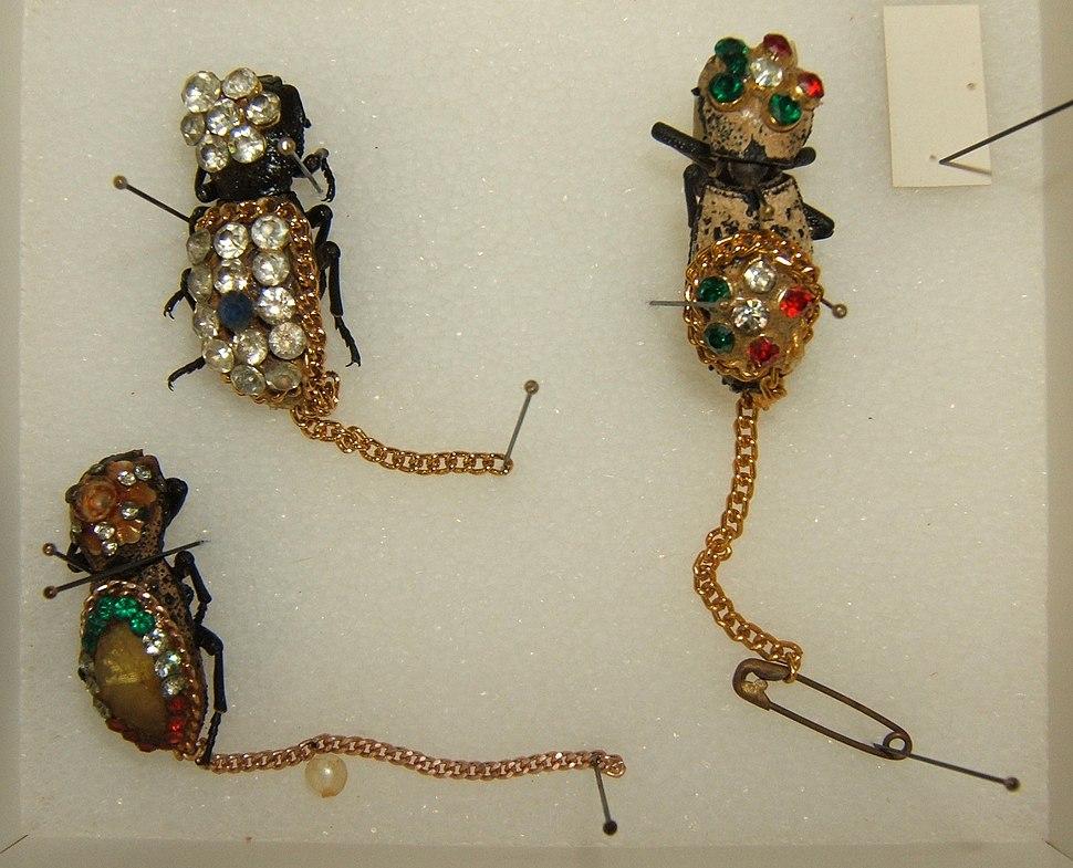 Zopheridae jewelry sjh
