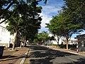 Đường Lê Duẩn (duy nhất tại TXBR có hàng cây bàng thái lan) - panoramio.jpg