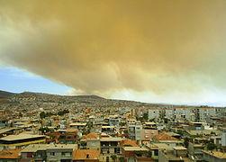 İzmir yangın 3.JPG