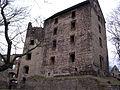 Świny zamek (9) Świny zamek. Foto Barbara Maliszewska.JPG