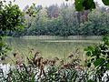 Šilovkas ezers - panoramio.jpg