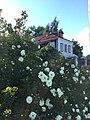 Дом Сухановых обе части село Юрово.jpg