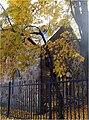Караульный домик у входа в парк с Дворцового проспекта (Ораниенбаумский дворцово-парковый комплекс), 1815 год.jpg