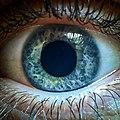 Космос в глазах CC-BY-SA 4.0.jpg