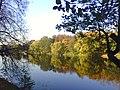 Осень, Кузьминки - panoramio.jpg