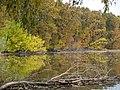Осень на заливе - panoramio.jpg